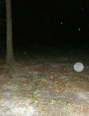 Orbs at the back of Beeler Park, Houston, TX