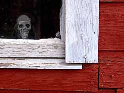 Skull in barn window