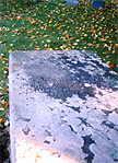 Edward Tyng's haunted grave