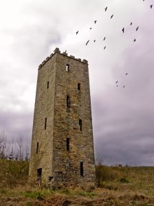 Ancient tower with crows