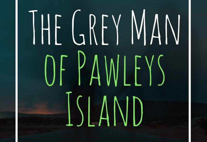 Grey Man of Pawley's Island SC