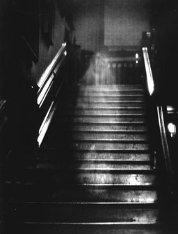 Brown Lady of Raynham Hall